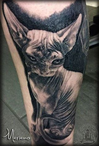 ArtCastleTattoo Tattoo ArtiestMariano Leg piece of a realistic Sphynx cat Black n Grey